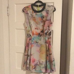Ted Baker Watercolor Dress